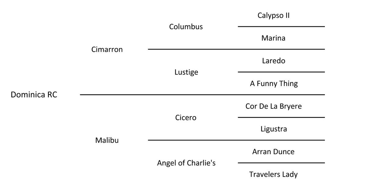 dominica rc pedigree